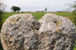 Elloe Stone